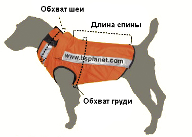 Жилетка для собак своими руками выкройки